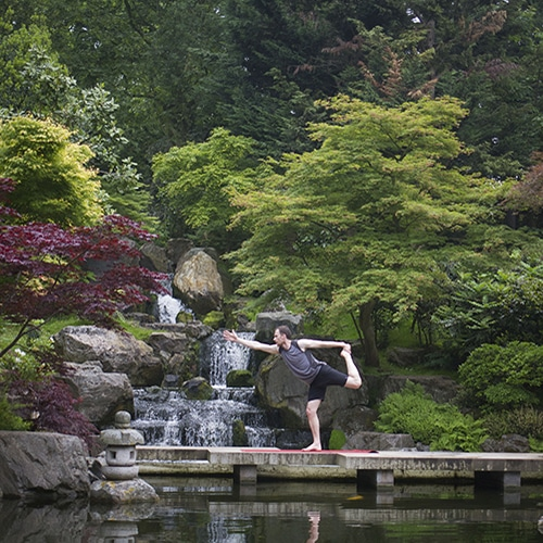 Yoga in Holland Park